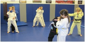 Fargo womens self defense
